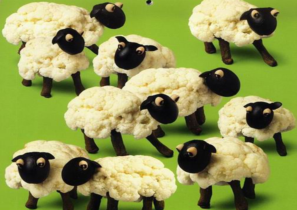 گل کلم و تزئین بشکل گوسفند